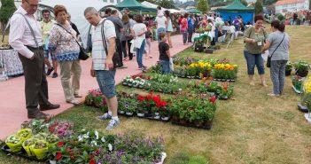 O mercado ofrece produtos frescos, alimentos transformados, planta, artesanía e artigos de segunda man