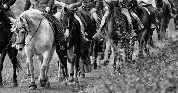 cabal