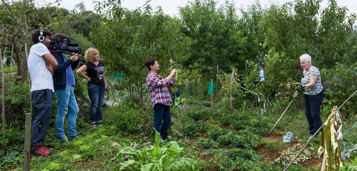 """Gravación do espazo """"Cos pés na terra"""", que en 2016 fixo unha reportaxe sobre o proxecto """"Teño unha horta..."""""""