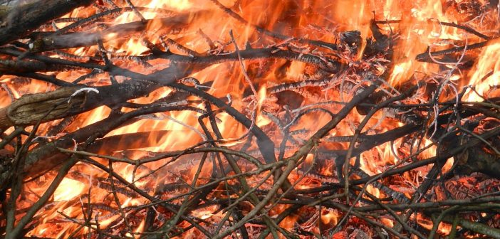 fire-1079296_960_720