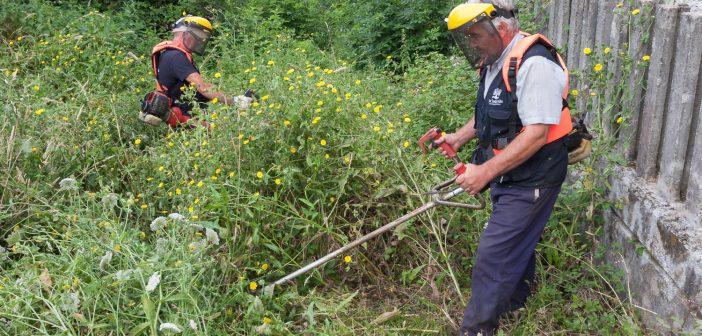 Os traballadores contratados a través do APROL Rural traballan facendo labores de roza