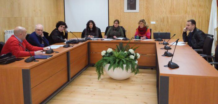 A MLC é un organismo interinstitucional creado hai tres anos para coordinar as accións preventivas e de actuación ante a violencia de xénero