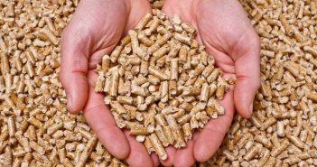 A nova caldeira funcionará con pellets, que son menos contaminantes e teñen un prezo máis estable